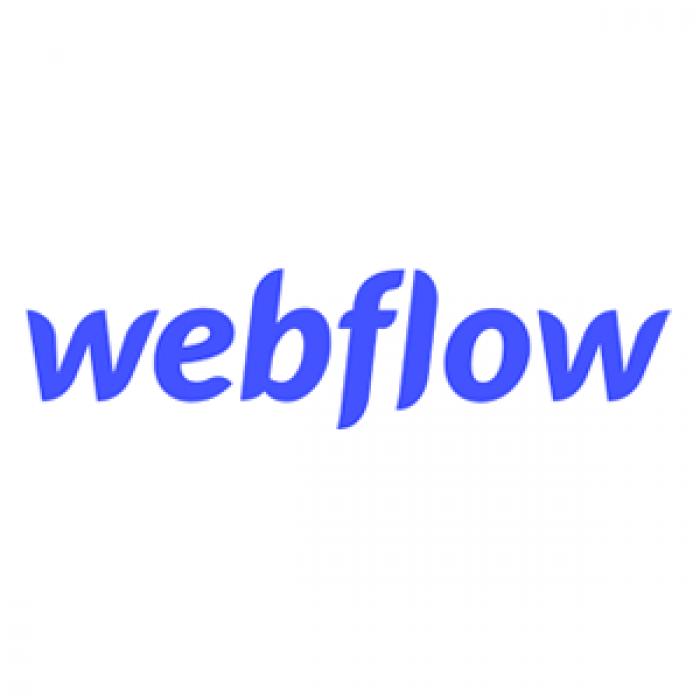 webflow logo 300x300