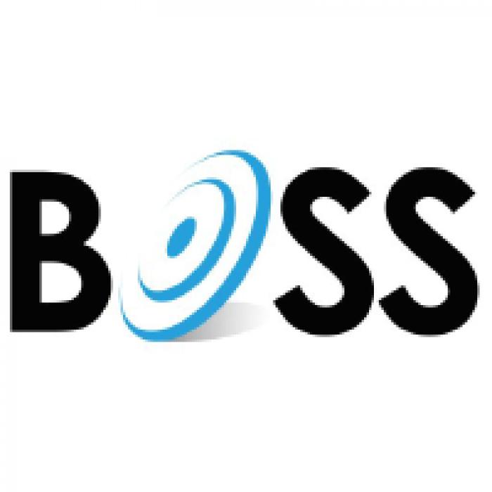 boss-solutions