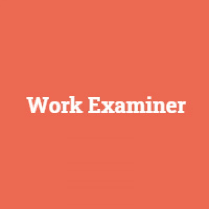 workexaminer